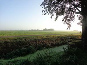 Landelijke omgeving